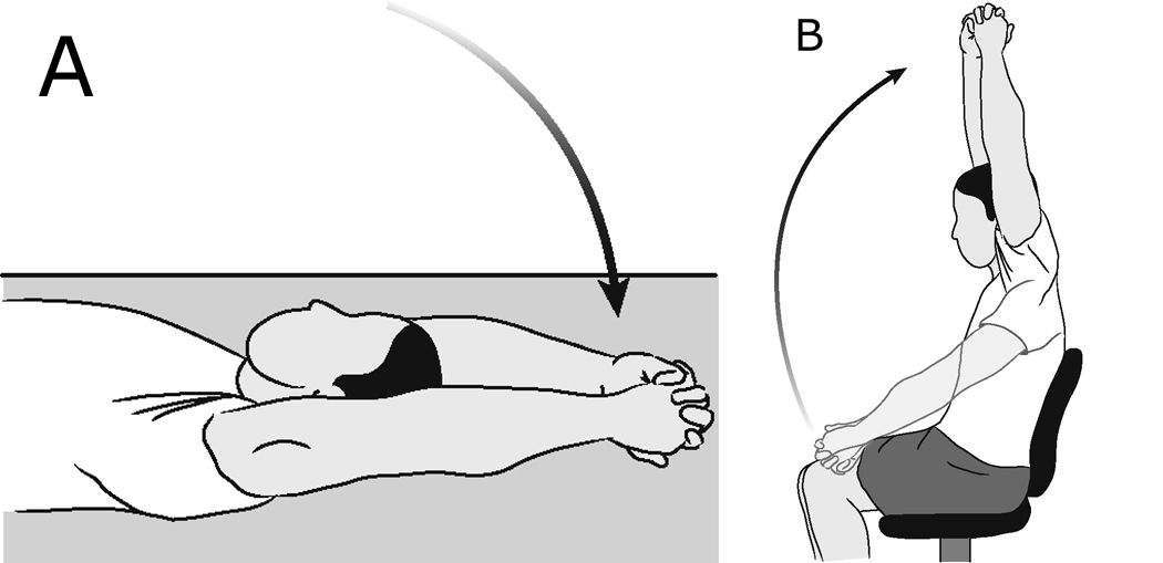 Illustrations of shoulder forward elevation (assisted)
