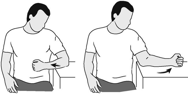 Illustration of supported shoulder rotation (assisted)