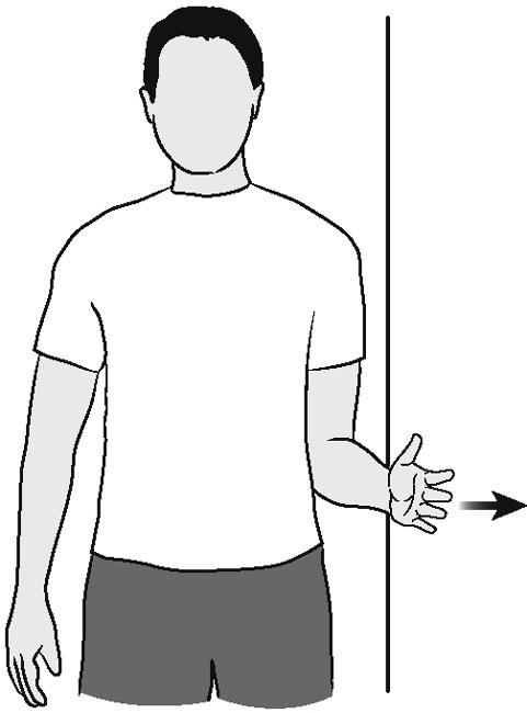 Illustration of shoulder external rotation (isometric)