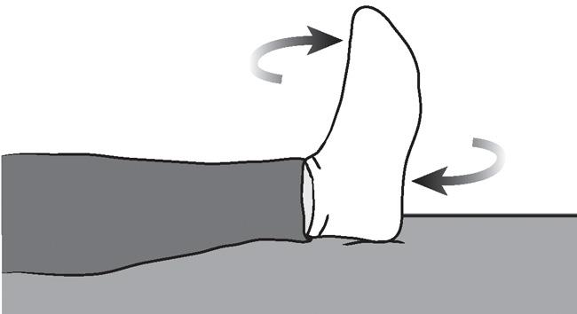 Illustration of ankle rotations