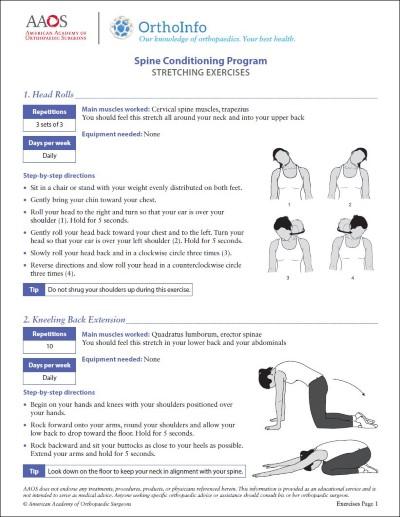 Spine Rehabilitation Exercises - OrthoInfo - AAOS
